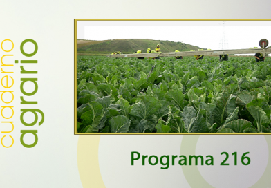Cuaderno Agrario PGM 216