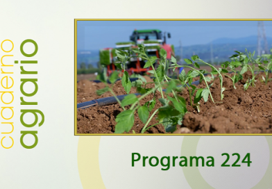 Cuaderno Agrario PGM 224