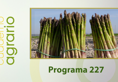 Cuaderno Agrario PGM 227