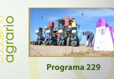 Cuaderno Agrario PGM 229