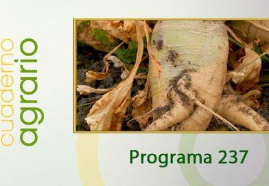 Cuaderno Agrario PGM 237