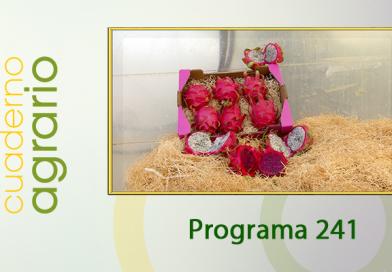 Cuaderno Agrario PGM 241