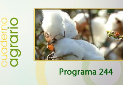 Cuaderno Agrario PGM 244