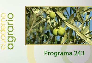 Cuaderno Agrario PGM 243