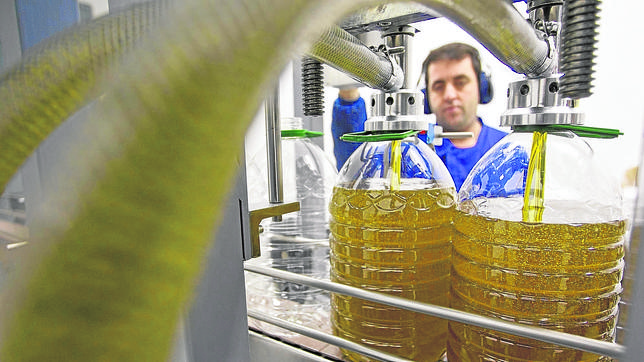 Agricultura publica la normativa que desarrolla en Andalucía el proceso de licitación de ayudas del almacenamiento de aceite