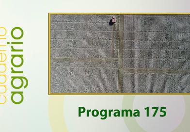 Cuaderno Agrario PGM 175