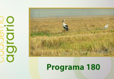Cuaderno Agrario PGM 180