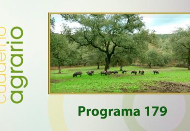 Cuaderno Agrario PGM 179