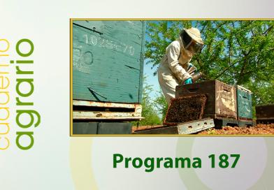 Cuaderno Agrario PGM 187