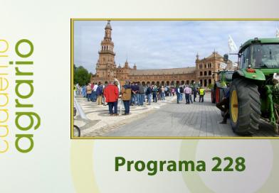 Cuaderno Agrario PGM 228