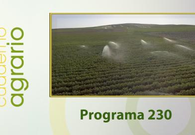 Cuaderno Agrario PGM 230