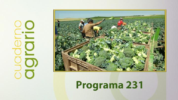 Cuaderno Agrario PGM 231