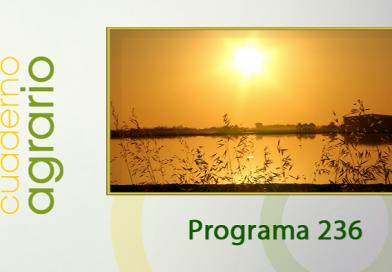 Cuaderno Agrario PGM 236