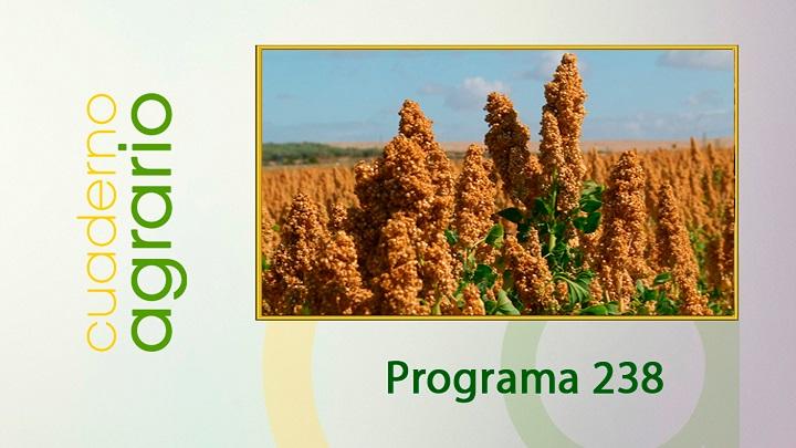 Cuaderno Agrario PGM 238