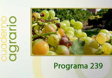 Cuaderno Agrario PGM 239